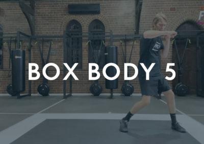 BOX BODY 5
